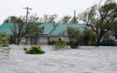 Hurricanes Hit Our Hearts – And Our Pockets