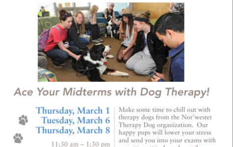 Heaven Is A Place With Therapy Dogs