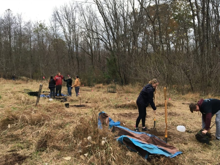 Bucks Students Restore Trail at Tyler State Park